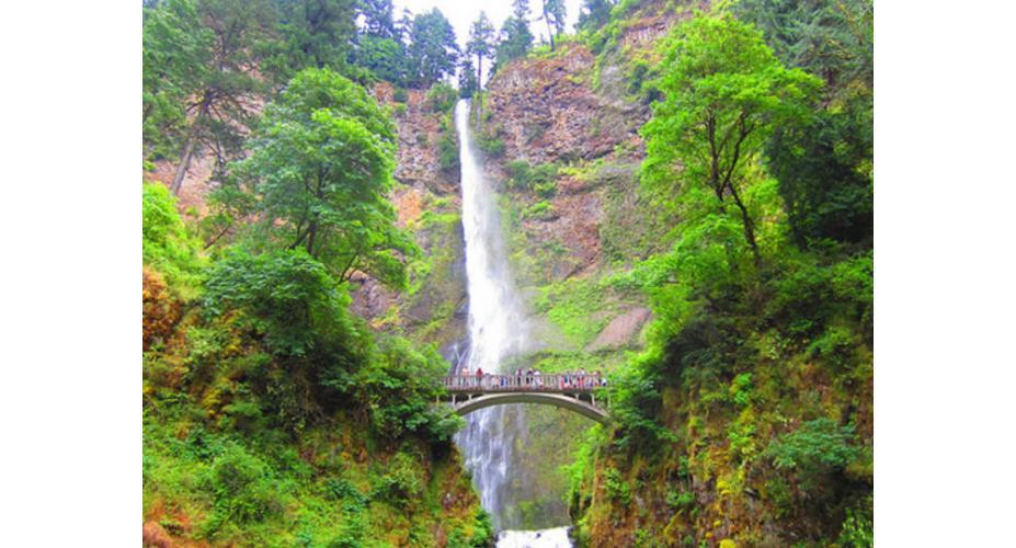 Winter Wonderland: 5 Gorgeous Waterfall Hikes Around Portland