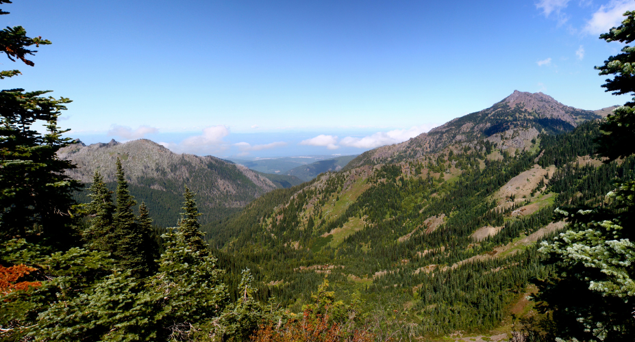 5 Rarely-Traveled Day Hikes in Olympic National Park
