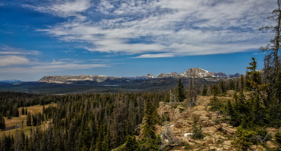 Uinta Day Hikes to Check Off Your List This Summer