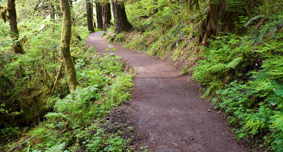 8 Best Beginner Hikes in the U.S.