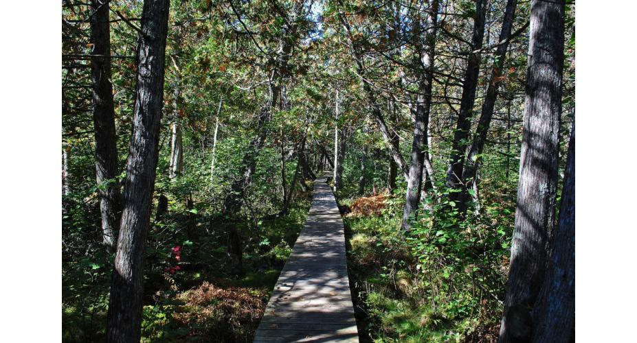 4,600 Miles from New York to North Dakota: An Overview of the North Country National Scenic Trail