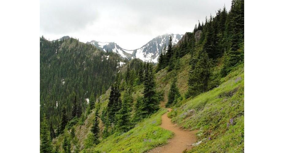 Undiscovered Half Marathons in Washington State