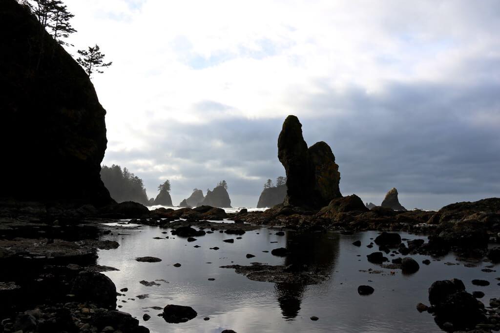 Hiking Shi Shi Beach Douglas Scott