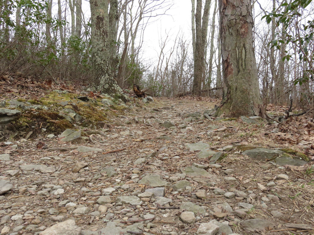 The Riprap Trail hooks up with two other trails and makes for a great multi-day hike. Jason Devaney