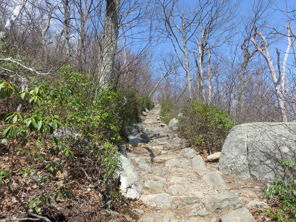 A rock garden leads to the Marys Rock summit and an amazing view. Jason Devaney