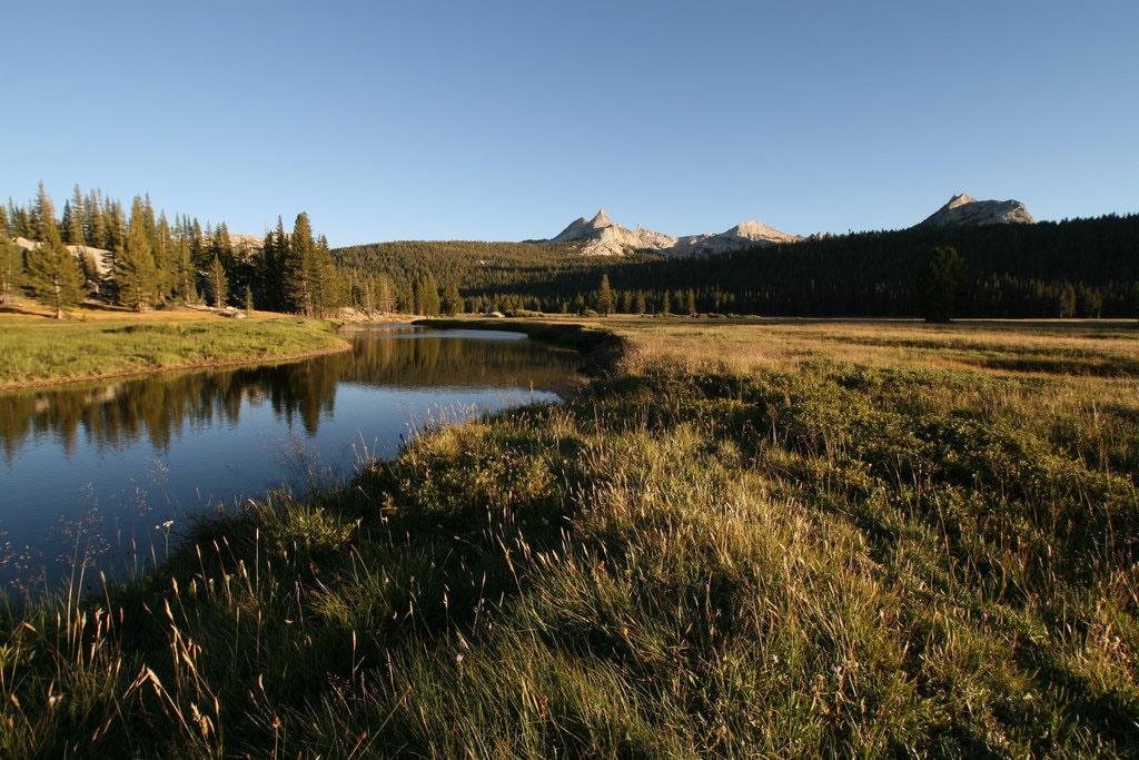 Yosemite Trail Running Image 2